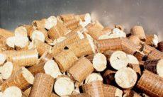 «ПечораЭнергоРесурс» начнет выпуск биотоплива