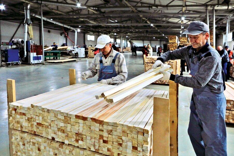 новый завод по переработке пиломатериалов в спб