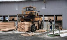 Деревообработка – самый прибыльный бизнес Карелии