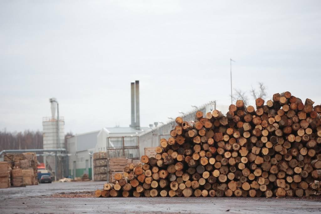 runka group увеличение производства деревообрабатывающей промышленности