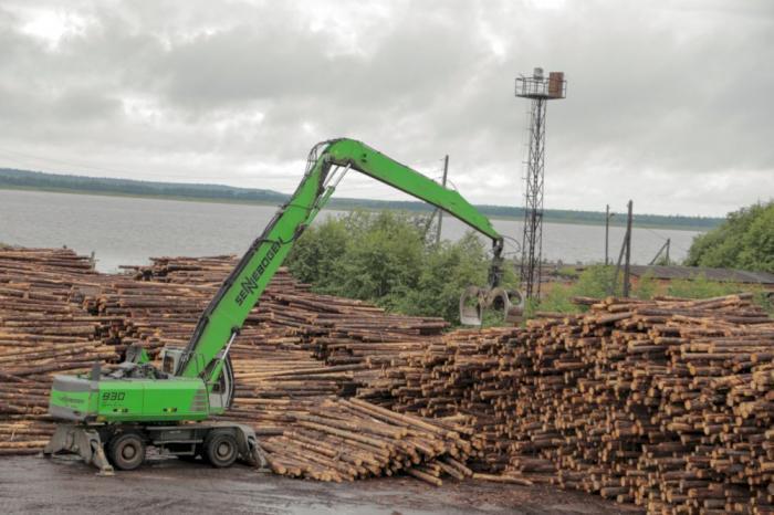 Онега, заготовка брёвен, лесопромышленность