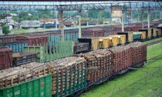 импорт лесоматериалов в китай